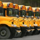 a line of yellow school buses